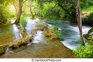 fluß, in, krka, nationalpark, dalmatien, kroatien, europe.