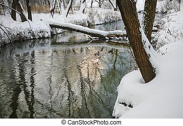 fluß, winter