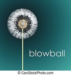 blowball - fluffy blowball head on the stem. vector...