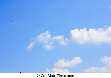 Fluffy cloud and small flying birds against blue sky background