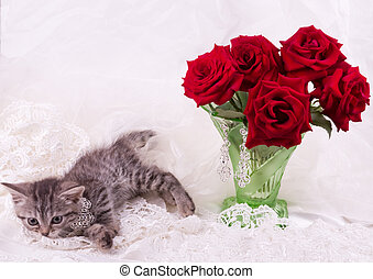 Fluffy colored kitten with red rose
