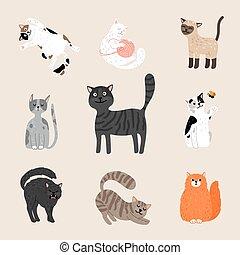 Fluffy funny cats