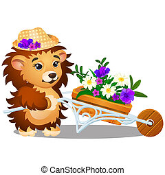 Fluffy hedgehog in the garden carries a wheelbarrow of fresh flowers isolated on white background. Vector cartoon close-up illustration.