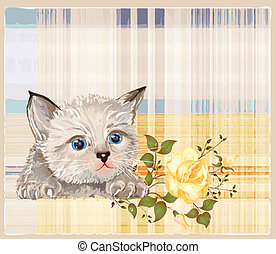 fluffy kitten with rose