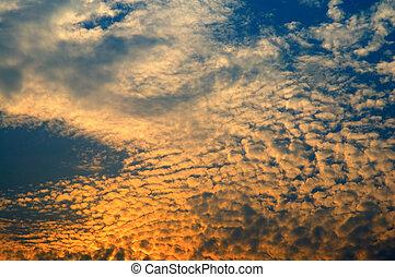 Fluffy sky