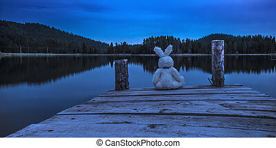Fluffy toy bunny sitting on a pier