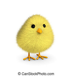 Fluffy Yellow Chick - A fluffy yellow chick isolated on a...