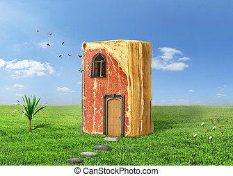 fluga, begrepp, magi, vistelse, gräs, reading., bok, fönster., dörr, dreaming., lysande, fåglar, ute