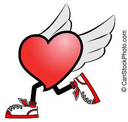 fluga, hjärta