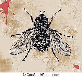 fluga, måla abstrahera, bakgrund