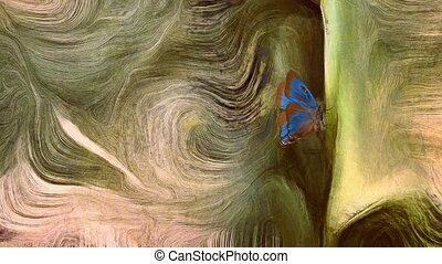 Fluid lines of color movement and butterfly