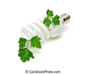 Fluorescent energy saving light bulb with green plant