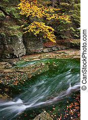flusso, in, autunno, scenario