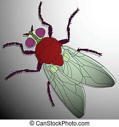 fly cartoon, abstract vector art illustration; image...