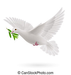 Fly dove