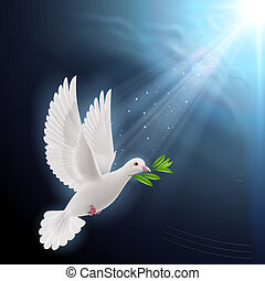Dove of peace flying with a green twig after flood on a dark background
