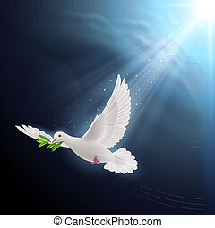 Fly dove - Dove of peace flying with a green twig after a...