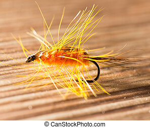 fly for fishing