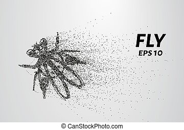 Fly from particles. The fly consists of small circles and dots. Vector illustration.