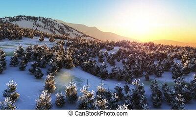 fly in winter mountain