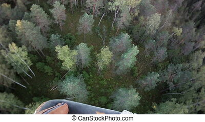 fly over trees fish eye view