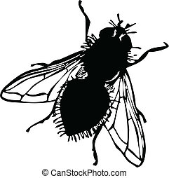 fly vector silhouettes