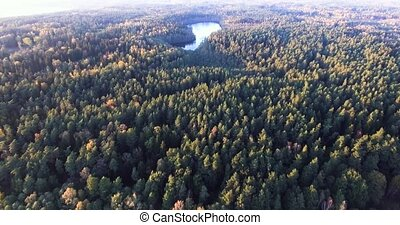 flying above autumn forest and lake