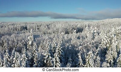 Flying above epic snow covered forest in cold winter...