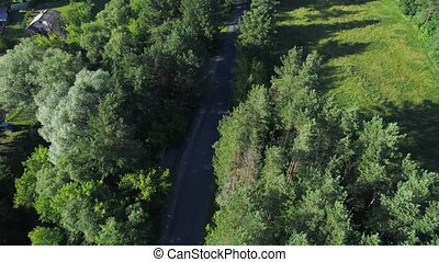 flying above road and forest - flying above road in green...