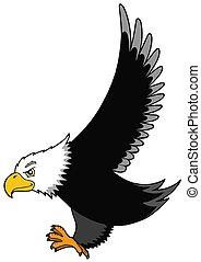 Flying American eagle - isolated illustration.