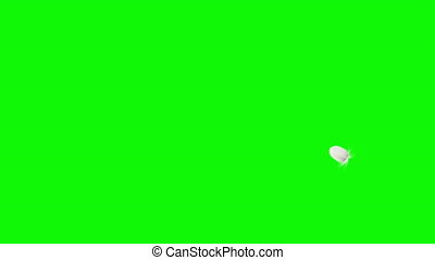 Flying And Falling Feather On Green And Black Backgrounds. Bottom View. 4K. 3D Animation. Ultra High Definition. 3840x2160.
