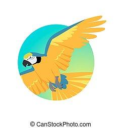 Flying Ara Parrot Flat Design Vector Illustration