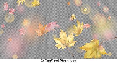 Flying Autumn Leaves