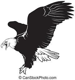 Flying Bald Eagle - Black Illustration, Vector