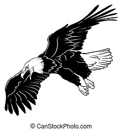 Flying Bald Eagle - Black Illustration, Vector