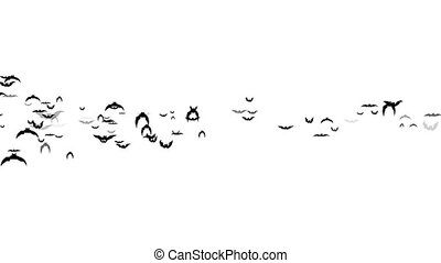 Flying bats halloween white background - Animation flying ...