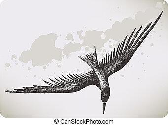 Flying bird, hand-drawing. Vector illustration.