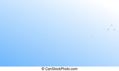 flying birds - flying, bird, birds, sky, clouds, HD,loop,...