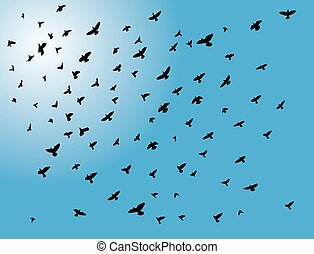 flying birds - vector flying birds