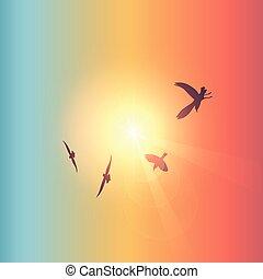 flying birds in sunny colorful sky