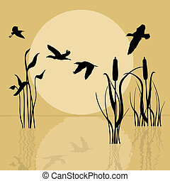 Vector background with silhouette flying birds over lake at sunset