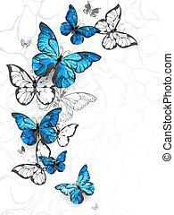 Flying butterflies morpho