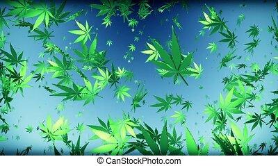 Flying cannabis leaves on dark blue