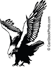 Flying eagle graphic