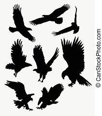 Flying eagle silhouettes