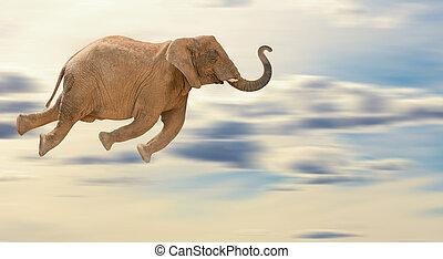 Flying Elephant, Outdoor