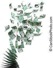 Flying Euros