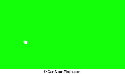 Flying Feather. Green Screen. Seamless Looping. 3D Animation. 4K. Ultra High Definition 3840x2160