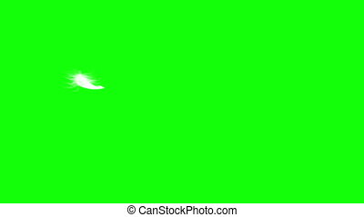 4K. Flying Feather. Green Screen. Seamless Looping 3D Animation