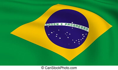 Flying Flag of Brazil | LOOPED |